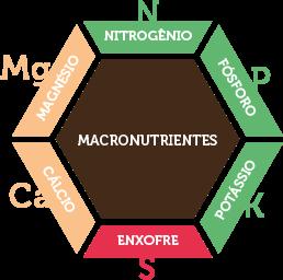 macronutrientes-a